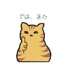 キジトラ猫の毎日使いやすいスタンプ(個別スタンプ:23)