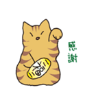 キジトラ猫の毎日使いやすいスタンプ(個別スタンプ:26)