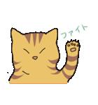 キジトラ猫の毎日使いやすいスタンプ(個別スタンプ:29)
