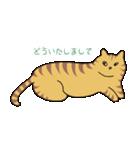 キジトラ猫の毎日使いやすいスタンプ(個別スタンプ:35)