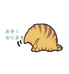 キジトラ猫の毎日使いやすいスタンプ(個別スタンプ:36)