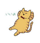 キジトラ猫の毎日使いやすいスタンプ(個別スタンプ:39)