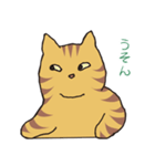 キジトラ猫の毎日使いやすいスタンプ(個別スタンプ:40)