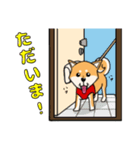 柴犬と4匹の先住猫スタンプ(個別スタンプ:04)