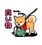 柴犬と4匹の先住猫スタンプ(個別スタンプ:05)