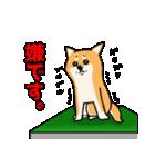 柴犬と4匹の先住猫スタンプ(個別スタンプ:12)