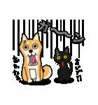 柴犬と4匹の先住猫スタンプ(個別スタンプ:16)