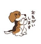 あほいぬみかん【敬語】(個別スタンプ:08)