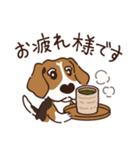 あほいぬみかん【敬語】(個別スタンプ:15)