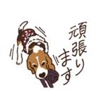 あほいぬみかん【敬語】(個別スタンプ:18)