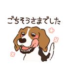 あほいぬみかん【敬語】(個別スタンプ:19)