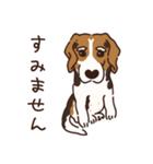 あほいぬみかん【敬語】(個別スタンプ:24)