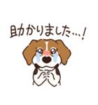 あほいぬみかん【敬語】(個別スタンプ:27)