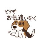 あほいぬみかん【敬語】(個別スタンプ:31)