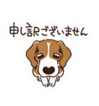 あほいぬみかん【敬語】(個別スタンプ:36)
