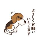 あほいぬみかん【敬語】(個別スタンプ:40)