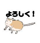 【ヘタカワ動物】毎日使うスタンプ40個(個別スタンプ:35)