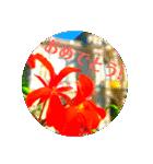 EUROPE flower2♡♡[日本語](個別スタンプ:09)