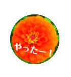 EUROPE flower2♡♡[日本語](個別スタンプ:15)