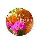 EUROPE flower3♡[日本語敬語](個別スタンプ:02)