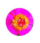 EUROPE flower3♡[日本語敬語](個別スタンプ:04)