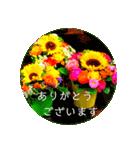 EUROPE flower3♡[日本語敬語](個別スタンプ:05)