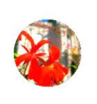 EUROPE flower3♡[日本語敬語](個別スタンプ:09)