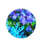 EUROPE flower3♡[日本語敬語](個別スタンプ:12)