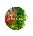 EUROPE flower3♡[日本語敬語](個別スタンプ:13)