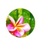 Malaysia island3[日本語敬語](個別スタンプ:01)