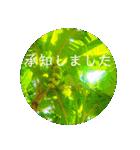 Malaysia island3[日本語敬語](個別スタンプ:02)