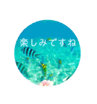 Malaysia island3[日本語敬語](個別スタンプ:14)