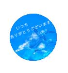 sea world3♡[日本語敬語](個別スタンプ:06)