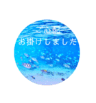 sea world3♡[日本語敬語](個別スタンプ:12)