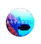 sea world3♡[日本語敬語](個別スタンプ:14)