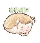 ハリネズミ団子 関西弁(個別スタンプ:12)