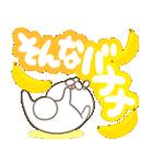 毎日つかえる デカ文字ダジャレ(うさ坊)(個別スタンプ:36)