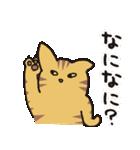 茶トラ猫の使いやすい可愛いスタンプ(個別スタンプ:06)