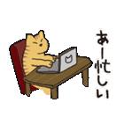 茶トラ猫の使いやすい可愛いスタンプ(個別スタンプ:07)