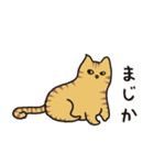 茶トラ猫の使いやすい可愛いスタンプ(個別スタンプ:10)