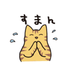 茶トラ猫の使いやすい可愛いスタンプ(個別スタンプ:13)