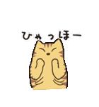 茶トラ猫の使いやすい可愛いスタンプ(個別スタンプ:15)