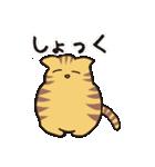 茶トラ猫の使いやすい可愛いスタンプ(個別スタンプ:16)