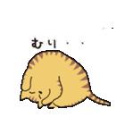 茶トラ猫の使いやすい可愛いスタンプ(個別スタンプ:20)