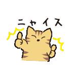 茶トラ猫の使いやすい可愛いスタンプ(個別スタンプ:28)