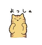 茶トラ猫の使いやすい可愛いスタンプ(個別スタンプ:29)
