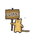 茶トラ猫の使いやすい可愛いスタンプ(個別スタンプ:32)