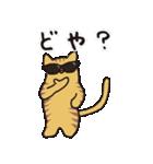 茶トラ猫の使いやすい可愛いスタンプ(個別スタンプ:37)