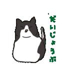 ハチワレ猫の使いやすいかわいいスタンプ(個別スタンプ:03)