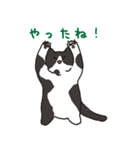 ハチワレ猫の使いやすいかわいいスタンプ(個別スタンプ:04)